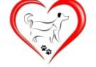 Всероссийская акция помощи бездомным животным «Лапа дружбы»